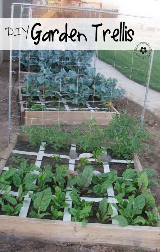 9-diy-garden-trellis-projects