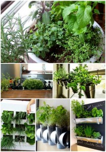 18 Best Ways To Grow Food Indoors