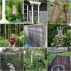 diy-garden-trellis-projects