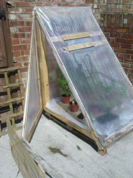 10-best-greenhouses-that-won't-break-your-budget