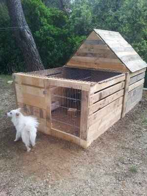 10-diy-quail-hutch-ideas-and-designs