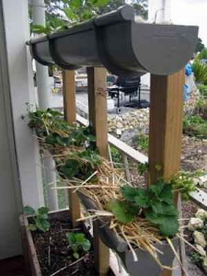 10-gutter-garden-ideas-and-designs