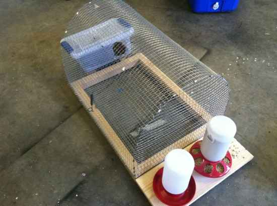 11-diy-quail-hutch-ideas-and-designs