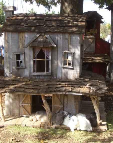 11-rabbit-hutch-ideas-and-designs