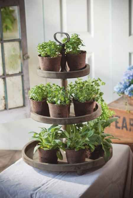 12-best-ways-to-grow-food-indoors