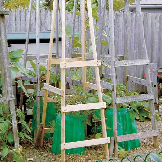 12 making some foldable tomato cages is a great idea