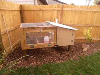 13-diy-quail-hutch-ideas-and-designs