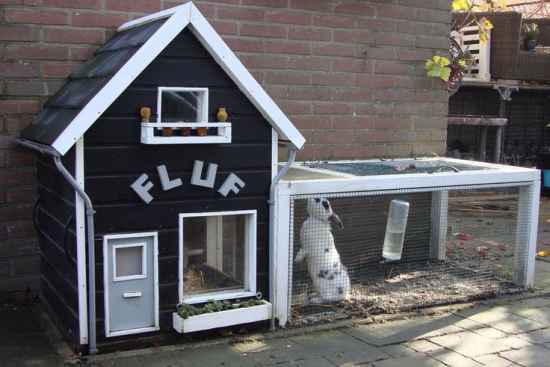 13 rabbit hutch ideas and designs