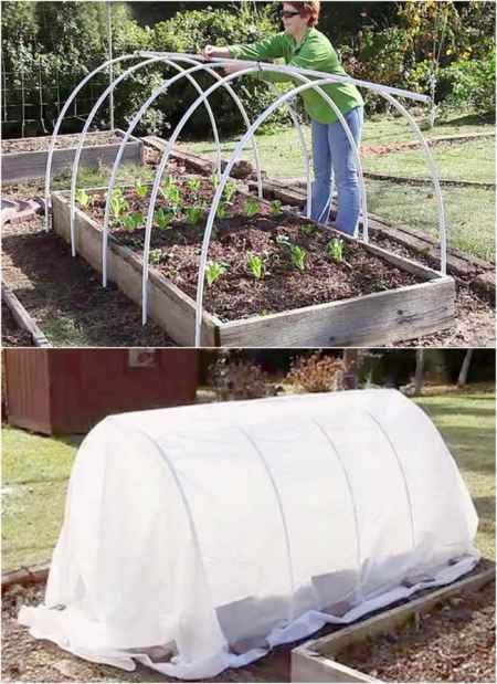 14-best-greenhouses-that-won't-break-your-budget