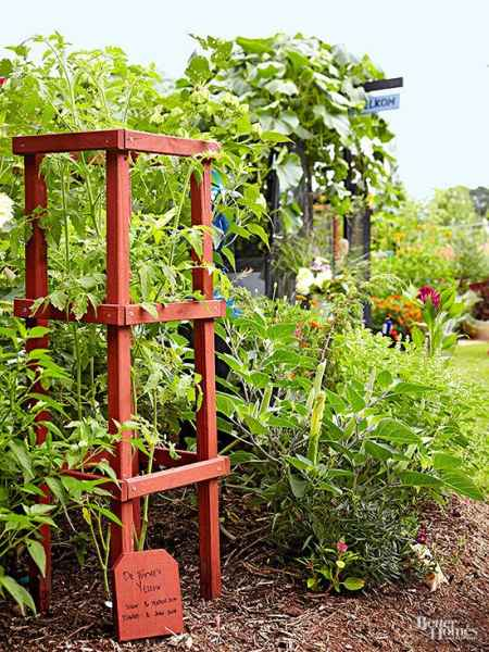14-diy-tomato-cages