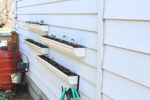 14-gutter-garden-ideas-and-designs