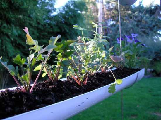 14-useful-diy-projects-for-the-garden