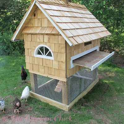 15-diy-quail-hutch-ideas-and-designs