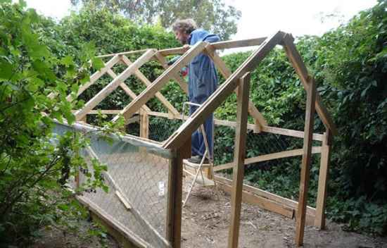 16-best-greenhouses-that-won't-break-your-budget