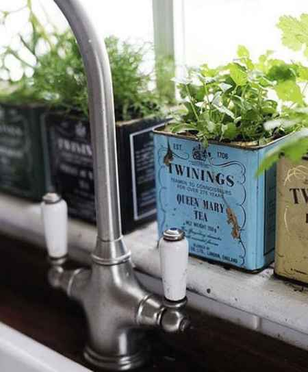 16-best-ways-to-grow-food-indoors