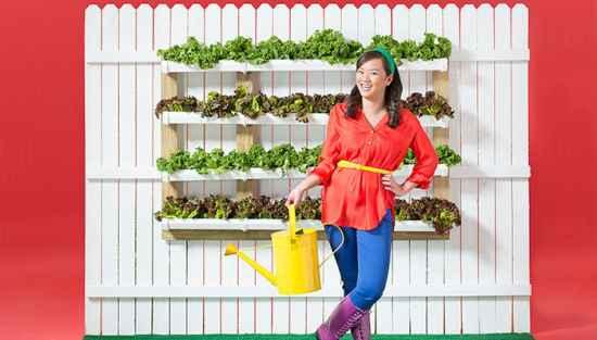 16-vertical-garden-ideas-for-your-home