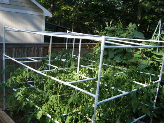 17-diy-tomato-cages