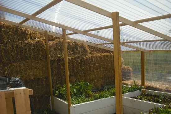 18-best-greenhouses-that-won't-break-your-budget