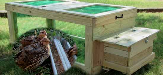 18-diy-quail-hutch-ideas-and-designs