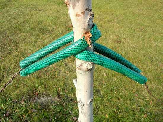 18-ways-to-repurpose-garden-hoses