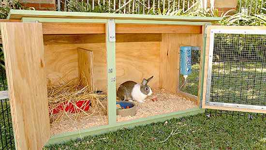 2-rabbit-hutch-ideas-and-designs