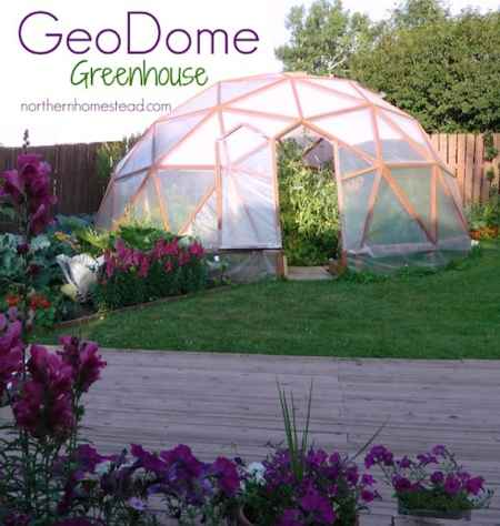 4-best-greenhouses-that-won't-break-your-budget