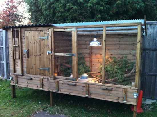 4-diy-quail-hutch-ideas-and-designs