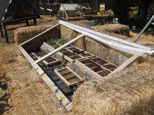 5-best-greenhouses-that-won't-break-your-budget