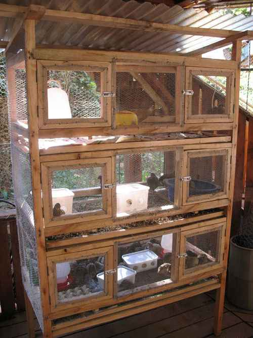 5-diy-quail-hutch-ideas-and-designs