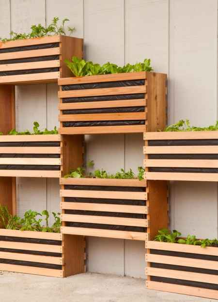 5-vertical-garden-ideas-for-your-home