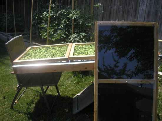 6-best-diy-solar-dehydrators