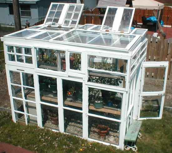 18 best greenhouses that won t break your budget