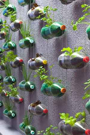 6-vertical-garden-ideas-for-your-home