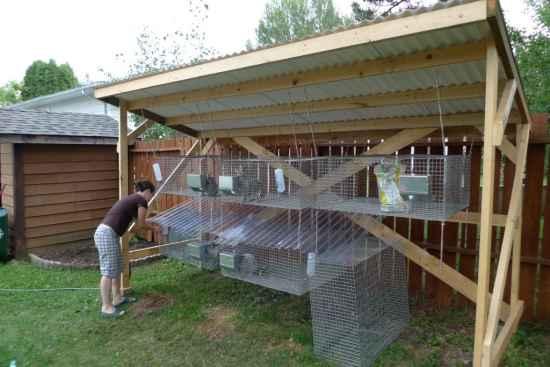 7-rabbit-hutch-ideas-and-designs