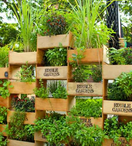 7-vertical-garden-ideas-for-your-home