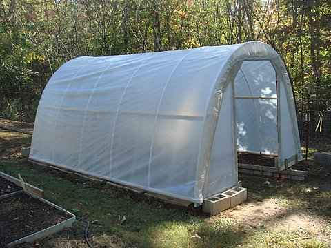 8-best-greenhouses-that-won't-break-your-budget