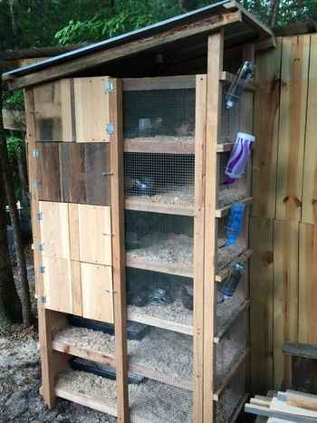 18 Diy Quail Hutch Ideas And Designs on outdoor shed plans