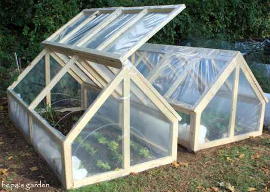 9-best-greenhouses-that-won't-break-your-budget