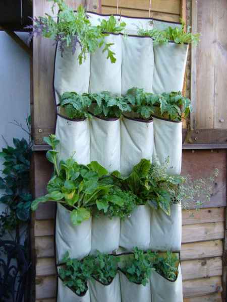 9-vertical-garden-ideas-for-your-home