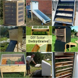 18 Best DIY Solar Dehydrators