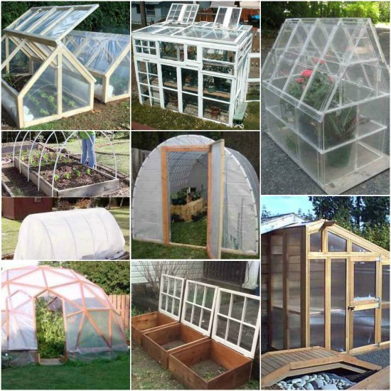 18 Best Greenhouses That Won't Break Your Budget