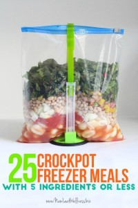 25 Crockpot Freezer Meals With 5 Ingredients Or Less