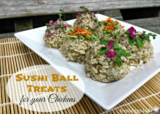 homemade chicken treats sushi balls