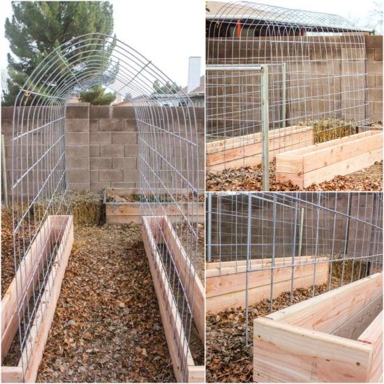 Wonderful How To Make A Trellis And Raised Garden Box Combo UO24