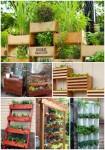 16 Vertical Garden Ideas For Your Home