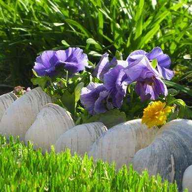 11-gardening-bed-edging-ideas-that-are-easy-to-do