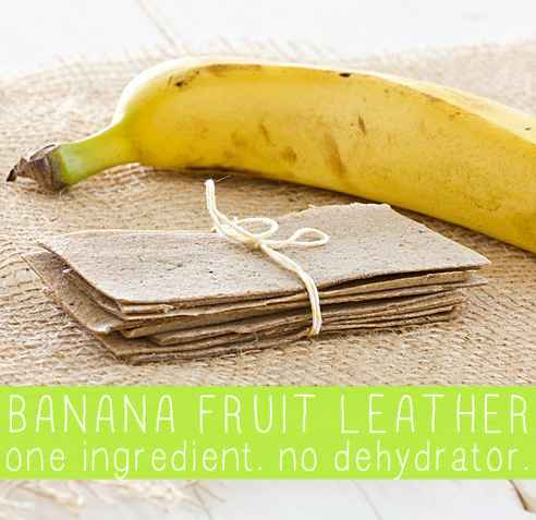 12-best-all-natural-fruit-leather-recipes