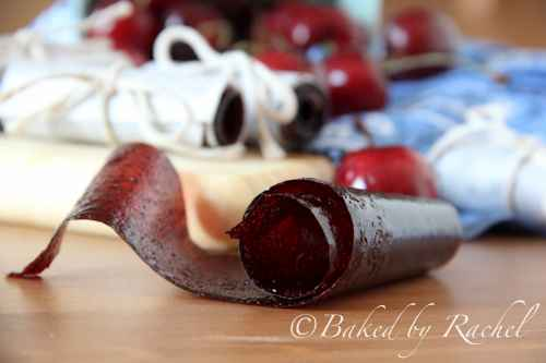 13-best-all-natural-fruit-leather-recipes