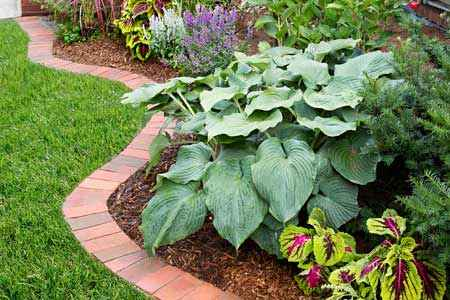 13-gardening-bed-edging-ideas-that-are-easy-to-do