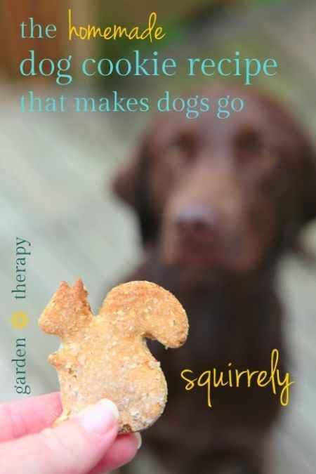 14-best-homemade-dog-food-and-treats-recipes